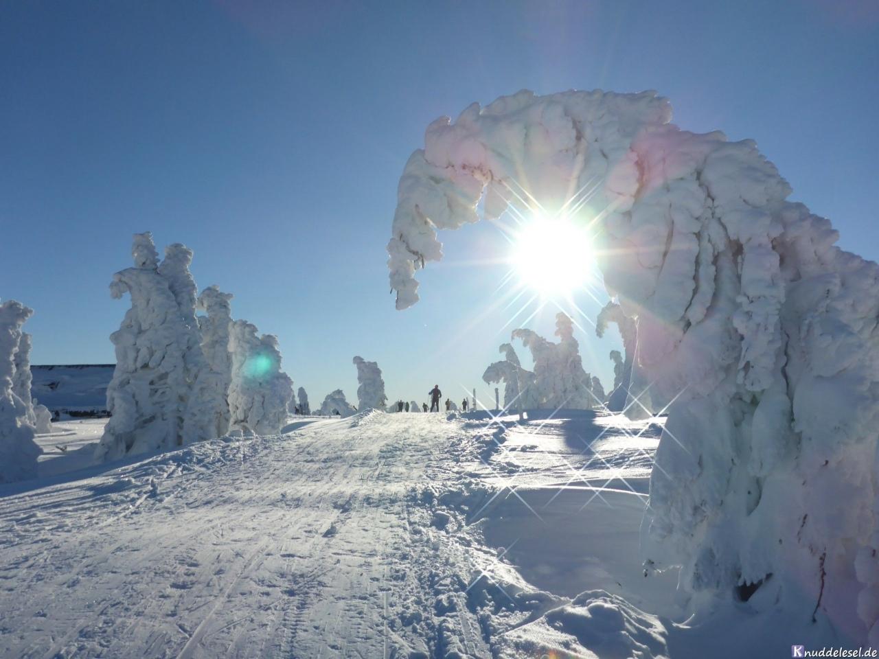bf8d4cba5622631eacaaa9c2.jpg - #snow #riesengebirge #tschechien #percygermany #landschaft #urlaub #winteriscoming #naturephotography #schnee #schneezauber #landscape #travel #cold #winterlandschaft #januar #berg #photography